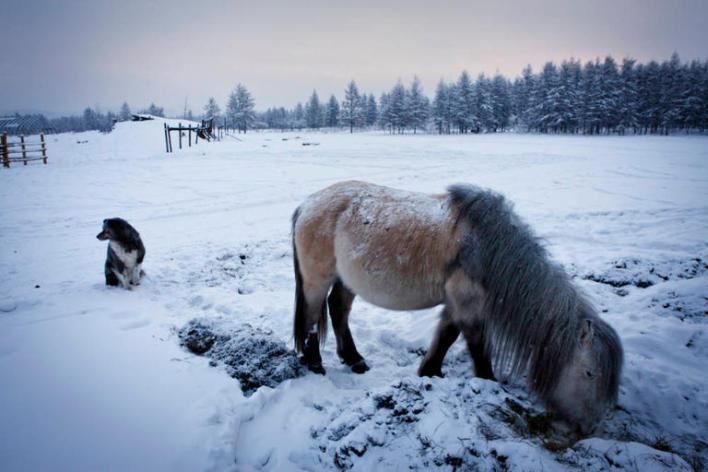 78 202431 winter russia temperature life 2 - بالصور ..  أكثر القرى برودة على وجه الأرض