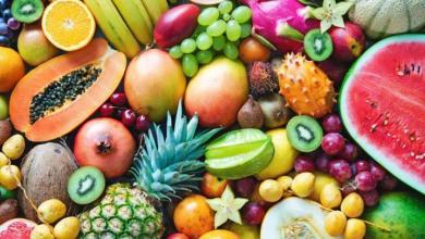 صورة أغرب أنواع الفواكه حول العالم بالصور وأسمائها.. اضغط على الصورة لترى المزيد