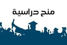 """صورة منحة دراسية مقدمة من منظمة """"سبارك"""" للطلاب السوريين المقيمين في تركيا"""