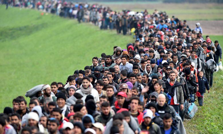 من السوريين.. ألمانيا تسجل نحو مليوني طلب لجوء scaled 1 - قرار هام بحق هجرة هذه الفئة من السوريين من قبل المملكة المتحدة .......إليك التفاصيل