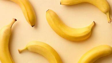 صورة مصادر إعلامية تتحدث عن اختفاء الموز تماماً عن الوجود.. شاهد التفاصيل