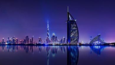 صورة مواطـ.ـنون ونشـ.ـطاء يرصـ.ـدون أحد أكثر الكائنات المرعـ.ـبة في مدينة دبي.. إليكم التفاصيل