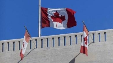 صورة لاجئ سوري يحرز نجاحًا كبيرًا في كندا ويحظى باهتمام رئيس الوزراء وهذا ما قام به