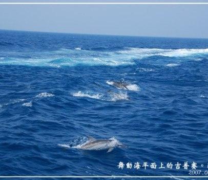 [宜蘭 景點] 舞動海平面上的吉普賽。龜山島 (海上搭船、賞鯨、賞豚)