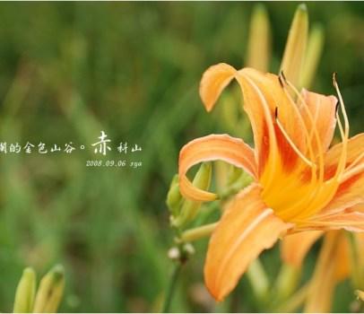 【花蓮 景點】 洄瀾的金色山谷。赤科山