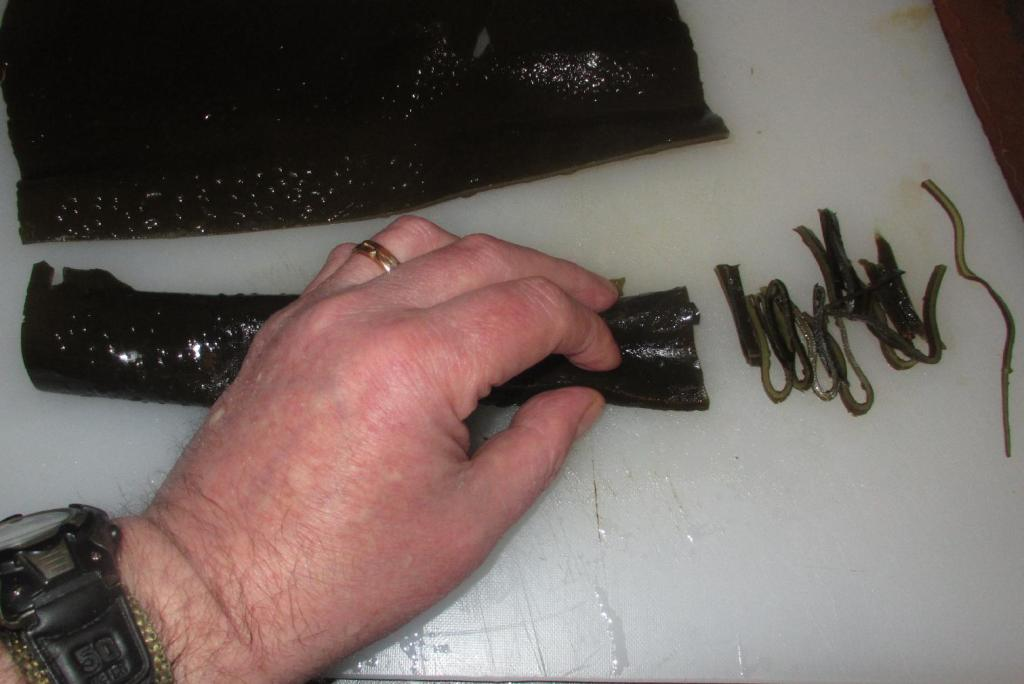 Slicing Kombu for Tsukudani