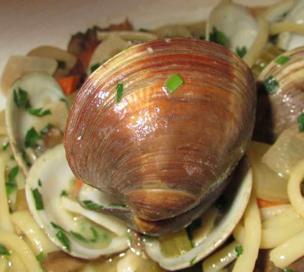 A Little Neck Clam in the Clams with Linguine at Play, Food & Wine