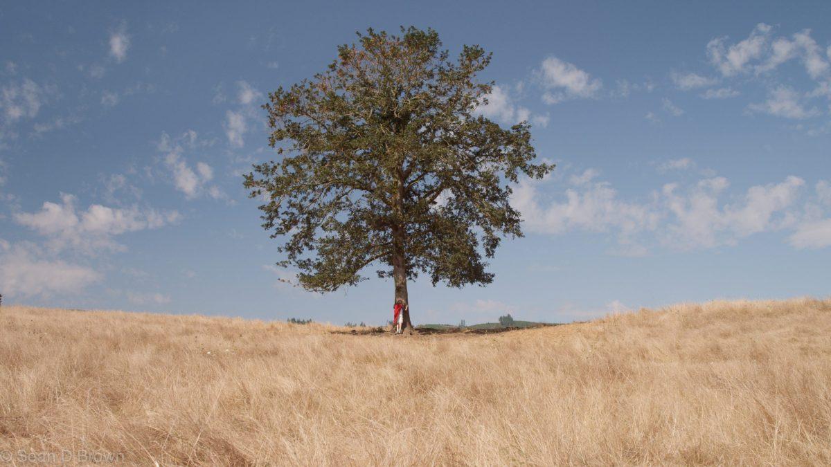 TREE COMMAND