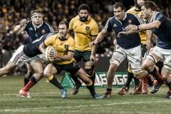 Rugby 2014 - Australia 6 – France 0