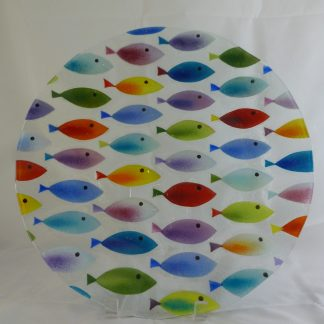 Multi Colored Fish