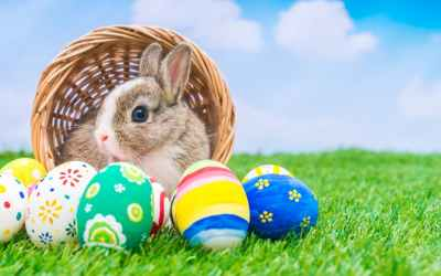 SydFIT Easter Hours
