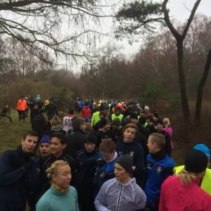 434 löpare är inte helt lätt att få in längst stigarna i Albäck.