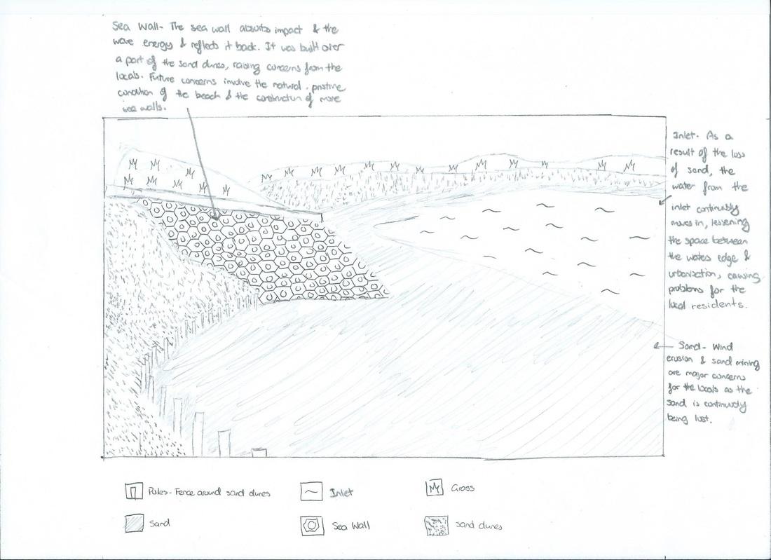 Sutherland Shire Council Bate Bay Management Plan