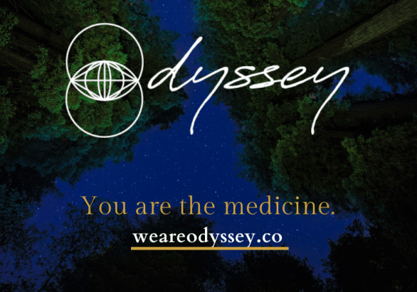 Copy of Copy of WE ARE ODYSSEY-Postcard 1