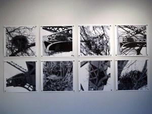 Titles: Nest 4 - 11