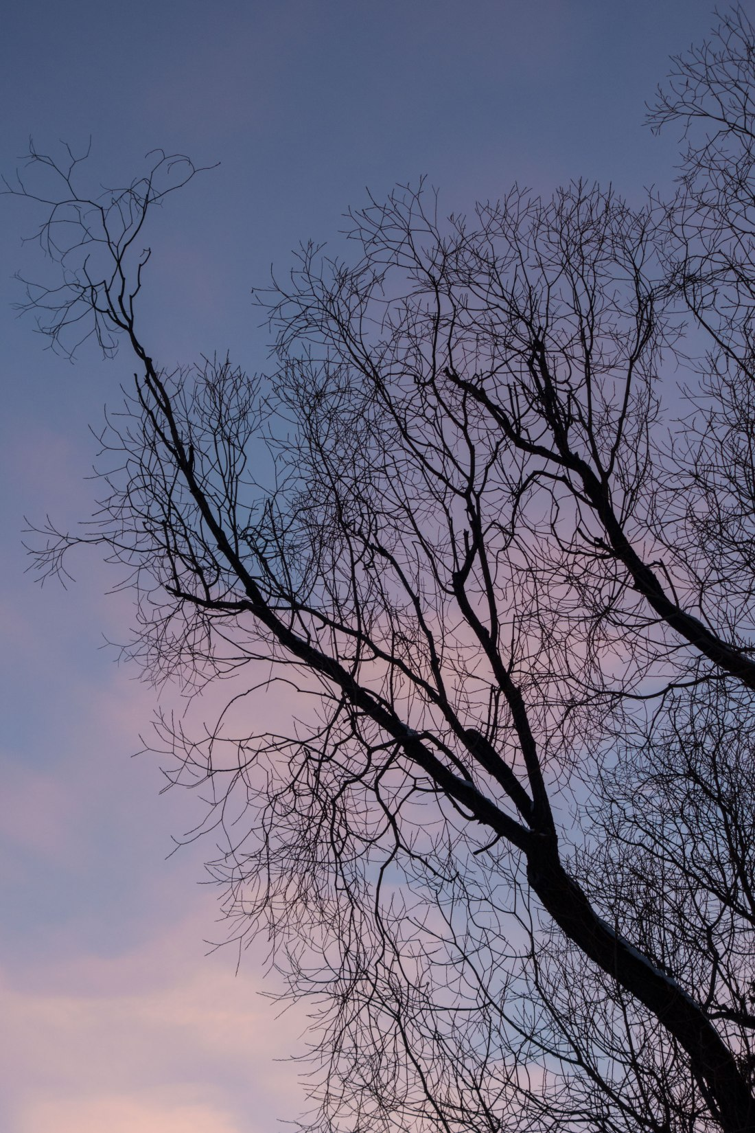 dusk4