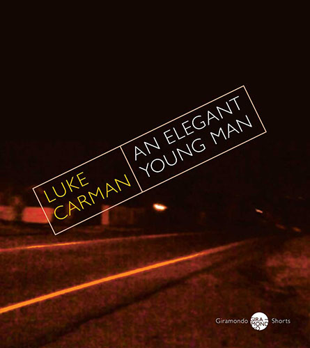An Elegant Young Man by Luke Carman cover