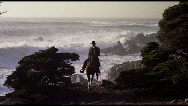 Showpony Sheriff - Man on horse-back beside tree with ocean waves crashing on rocks in the background