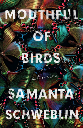 Book cover: Mouthful of Birds by Samantha Schweblin