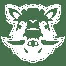 Boars 2019 s1