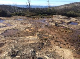 Kanangra Walls Plateau, Kanagra-Boyd National Park