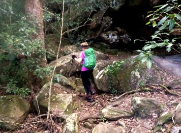 Berowra to Mt Ku-ring-gai: Rocky Creek Crossing