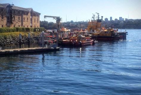 Dalgety Wharf, Barangaroo