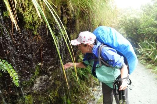 Sampling the water