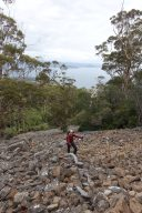 Maria Island - Bishop and Clerk scree