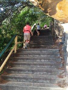Sarahs Walk Stairs Bottom - 151