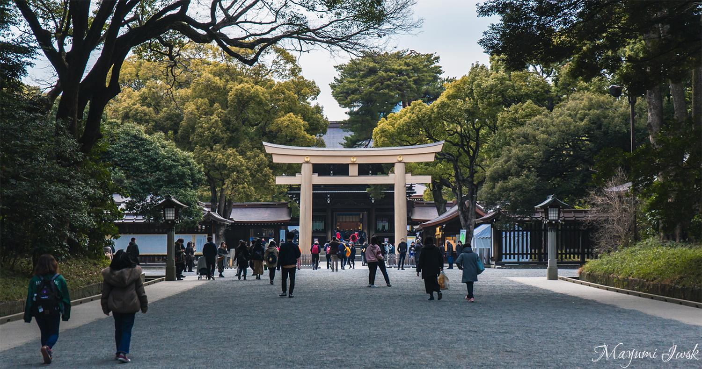 "The famous power spot/vortex in Tokyo ""MEIJI SHRINE"" | TOKYO"