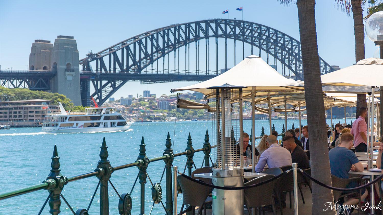 ハーバーブリッジを眺めながら絶品オイスター SYDNEY COVE OYSTER BAR(シドニー・コーヴ・オイスター・バー)| CIRCULAR QUAY