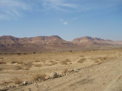 Stein, grus, sand, fjell og lite vann = ørken!