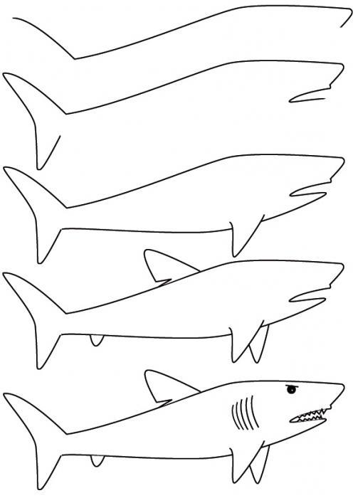 Gambar Mewarnai Ikan Hiu : gambar, mewarnai, Halaman, Mewarnai, Licik.