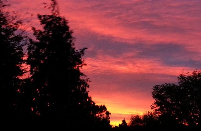 2014 We woke up to this beautiful sunrise.