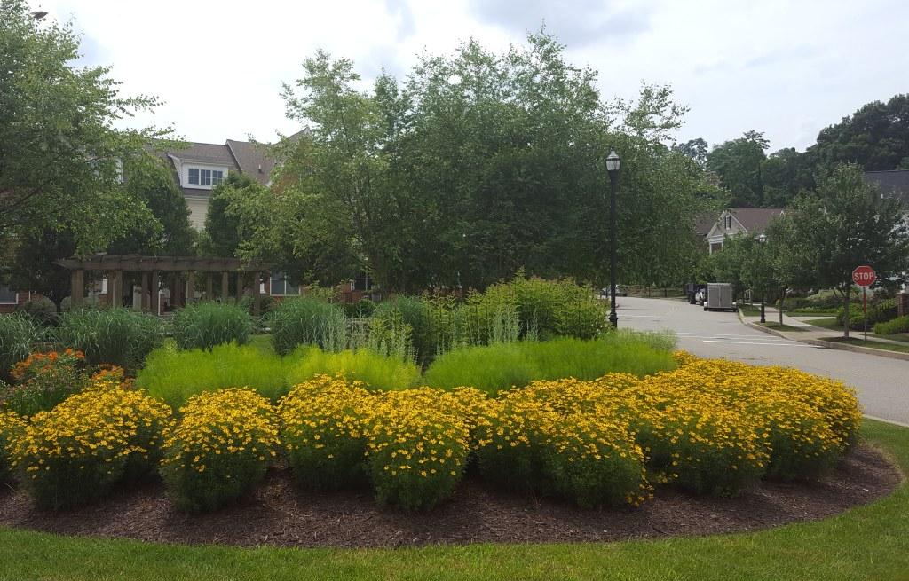 pollenator-garden-landscaping