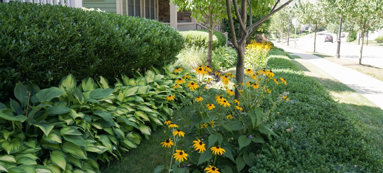 Seasonal Landscape Maintenance Programs