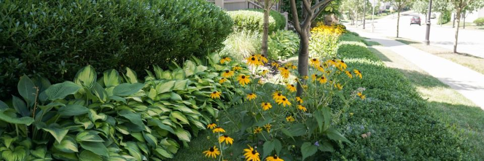 Seasonal Landscape Maintenance Programs