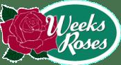 weeks roses