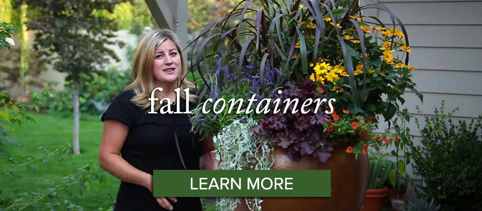 fallcontainer_learn