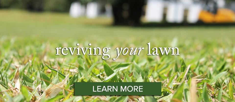lawn_learn