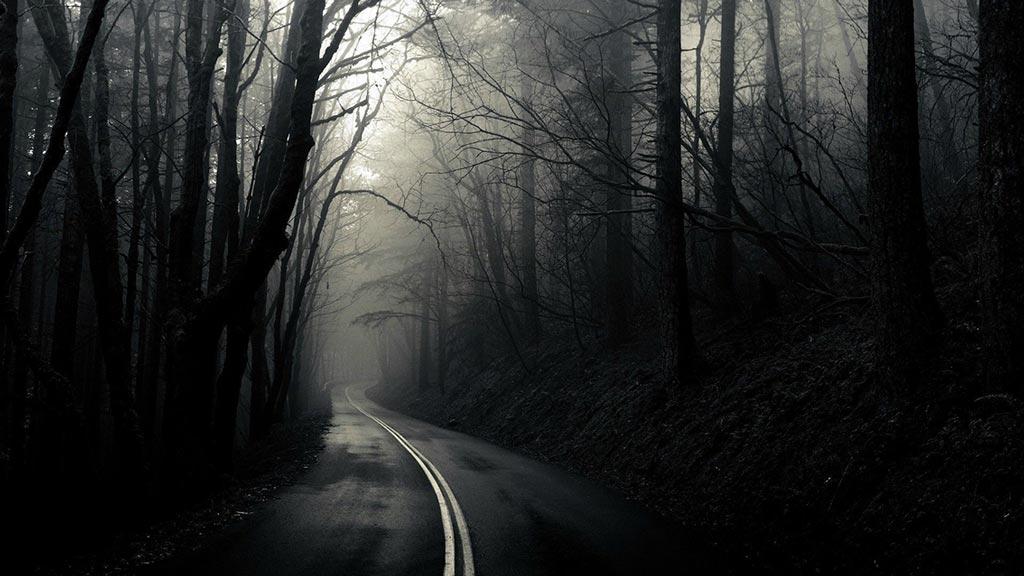 route traverse foret sombre