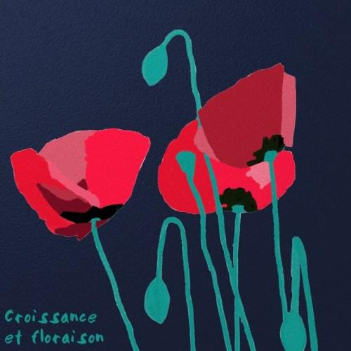 8-Croissance et floraison.jpg