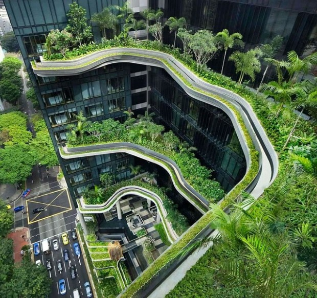 Urban Garden CCBY Deakpants via Flickr