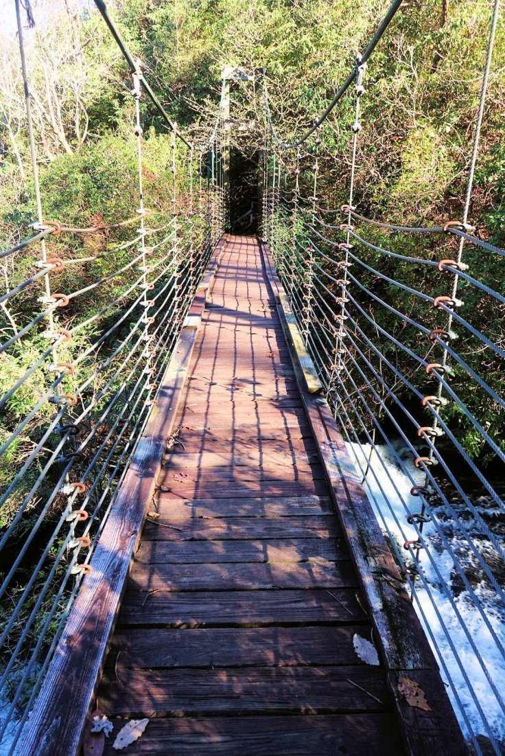 The suspension bridge was fun to walk on