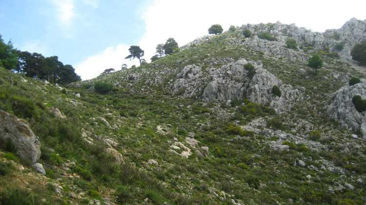SYMBIODIV Votre bureau d'études et de conseils en écologie Provence photos photo paysages paysage PACA milieu naturel biodiversité