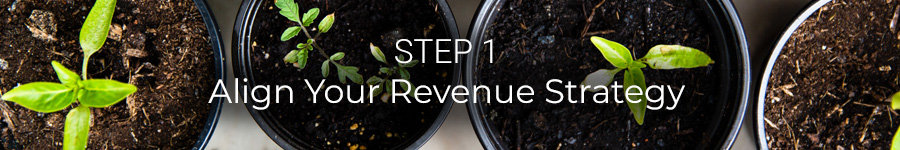 Step 1: Align Your Revenue Strategy