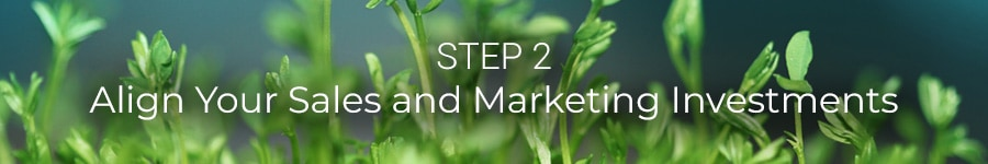 Step 2: Align Your Sales and Marketing Investments