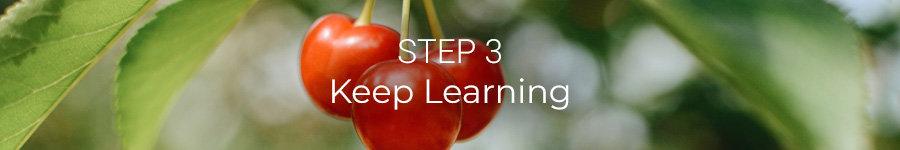 Step 3: Keep Learning