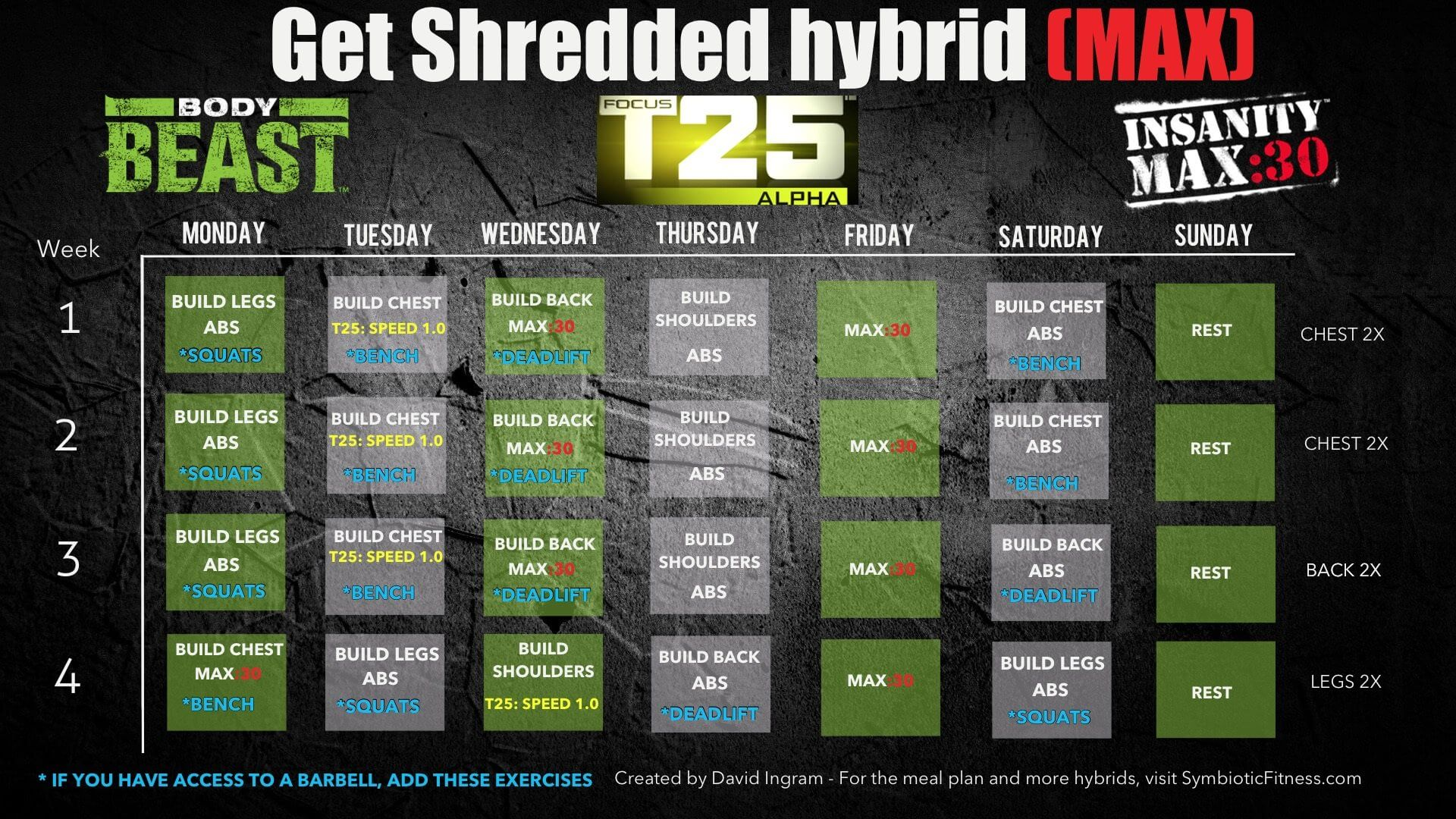 Bodybeast Hybrid With Insanity Max 30 And T25